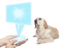 Dog and technology concept Royalty Free Stock Photos
