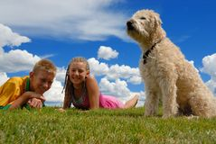 Dog with teens. Family dog sits on grass with teenagers Royalty Free Stock Photos