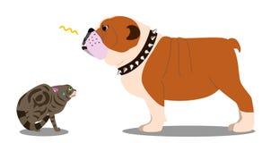 Dog threatening cat. Strong Bulldog threatening poor kitty Stock Image