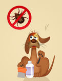 Dog with ticks Stock Images