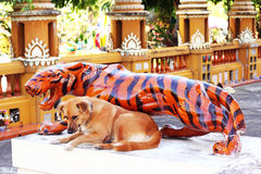 Dog and tiger statue. Together Stock Image