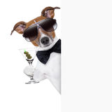 Dog toasting. With martini glass behind a blank placard banner Royalty Free Stock Images