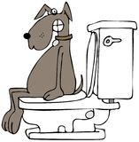 Dog on a toilet Royalty Free Stock Photo