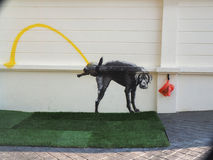 Dog toilet Royalty Free Stock Photography