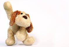 Dog toy Stock Image