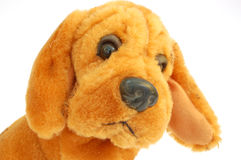 Dog - toy. On white background royalty free stock photography