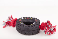 Dog toy. Rubber tire with pulling cord for dog play.  on white background Stock Photography