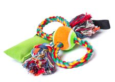 Dog toy on white. Dog toy - colorful cotton rope for games, isolated on white background with copy space Royalty Free Stock Photography
