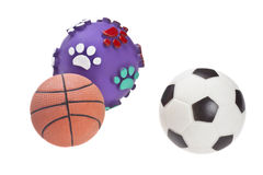 Dog toys Stock Photos