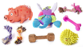 Dog toys Royalty Free Stock Photos