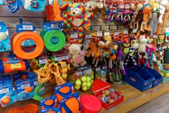Dog Toys in Pet Shop Display. A selection of dog toys in a pet shop Stock Images