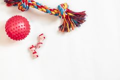 Dog toys set: colorful cotton dog toy and pink ball on a white background. Top view. Copy space. Still life. Flat lay royalty free stock photography