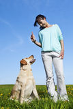 Dog trainer Royalty Free Stock Photos