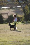 Dog Training. Dog with lady on common at green Noordhoek, Cape Town Stock Photography