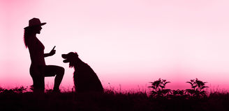 Dog training banner in pink Stock Photos