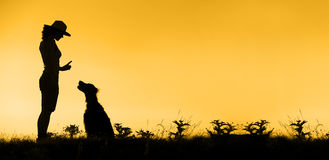 Dog training banner. Website banner of dog training silhouette Stock Photography