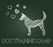 Dog Training Camp Shows Instruction Taught And Canine Stock Image