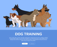 Dog Training Concept Flat Style Vector Web Banner Stock Photos