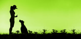 Dog training in green. Website banner of dog training silhouette in green Royalty Free Stock Images