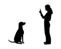 Dog training (obedience) Stock Photo
