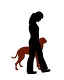 Dog training (obedience). Command heel, dog follows handler Stock Photos