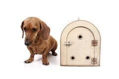Dog transport cage Stock Photos