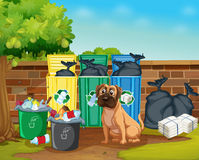 Dog and trashcans Stock Photo