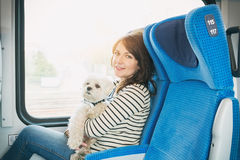 Dog traveling by train Royalty Free Stock Images