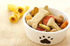 Dog food in bowl Royalty Free Stock Photos