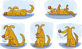 Dog tricks. Illustration of Happy Dog doing tricks Stock Photo