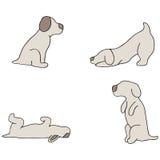 Dog Tricks. An image of dog tricks Royalty Free Stock Photography