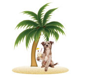 Dog on Tropical Island with Pina Colada Royalty Free Stock Photo
