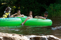 Dog Tubes Down North Georiga River With Owner Royalty Free Stock Photos
