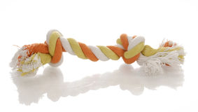 Dog tug rope toy stock image