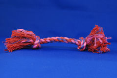 Dog tug rope toy. On blue background Stock Photography