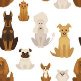 Dog types and breeds canine animals seamless pattern vector. Dog types and breeds canine animals seamless pattern isolated on white background vector vector illustration