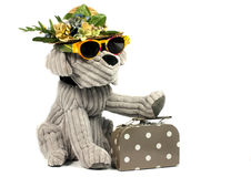 Dog on vacation Stock Photography