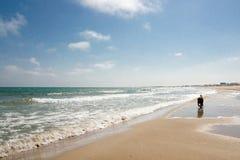 Dog valpspring på sjösidadagtid med blå himmel och moln Arkivbild