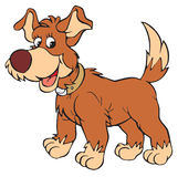 Dog (vector clip-art) Stock Photos