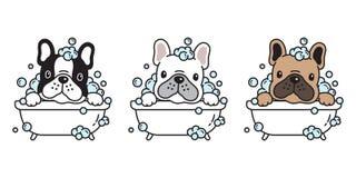 Dog vector french bulldog bath shower cartoon character icon logo breed illustration. Dog vector french bulldog bath shower soap bubble cartoon character icon stock illustration