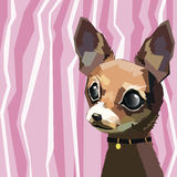 Dog vector funny little home eared Royalty Free Stock Photography
