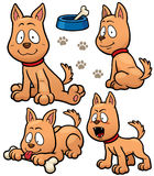 Dog. Vector illustration of Cartoon Dog Character Stock Photos