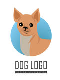 Dog Vector Logo in Flat Style Design. Dog vector logo in flat style. Chihuahua bust in the blue circle illustration for pet shop, breed club logotype, app icon Stock Photos