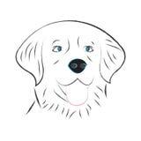 Dog vector puppy cute labrador Royalty Free Stock Photo