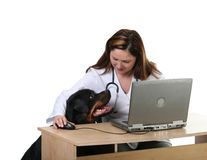 Dog at the vet. Veterinarian and dog patient sitting at the desk, isolated on white Royalty Free Stock Photography