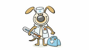Dog - veterinarian doctor stock video