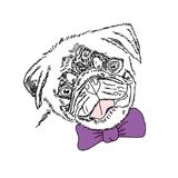 Dog with violet bow. Cute pug portrait. Vector sketch illustration. Dog with violet bow. Cute pug portrait. Vector sketch illustration Royalty Free Stock Photography