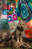 Dog waiting in front of tree covered in yarn bombing Stock Image