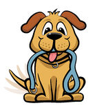 Dog waiting to walk clipart Royalty Free Stock Images
