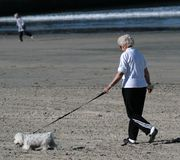 Dog Walk. Woman walking her dog at the beach Royalty Free Stock Photography